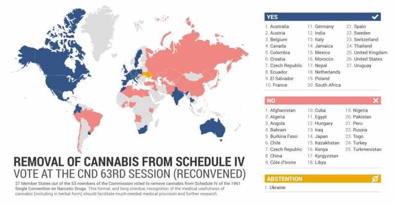 La ONU retira al cannabis de la lista de drogas peligrosas y lo reconoce como sustancia terapéutica después de 50 años