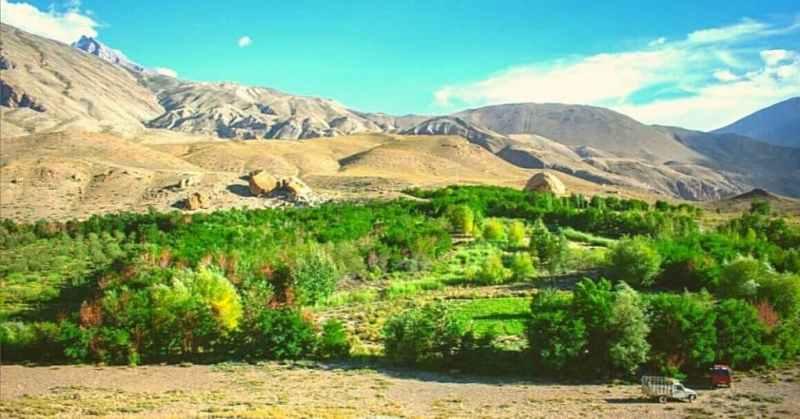 Este hombre convirtió el desierto en un oasis de vida al plantar más de 30 mil árboles