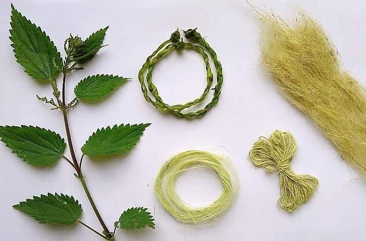 Telas de fibra de ortiga: no pican y son más resistentes que el algodón
