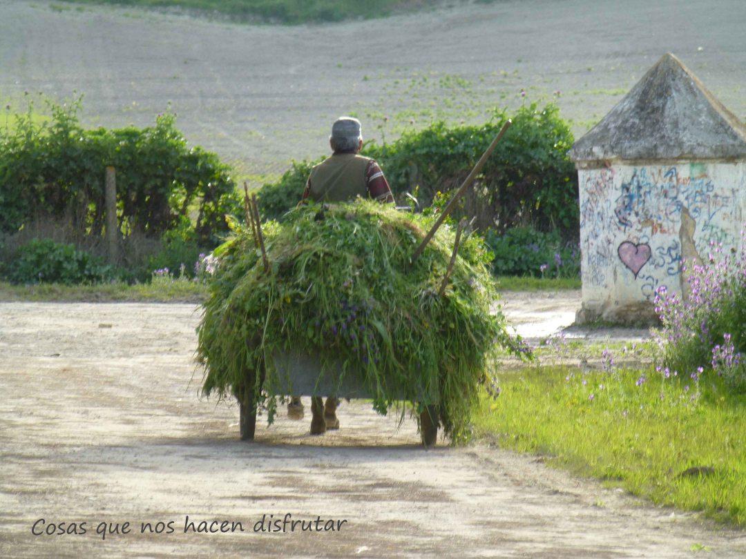 Otra forma de vivir. #sanlúcar