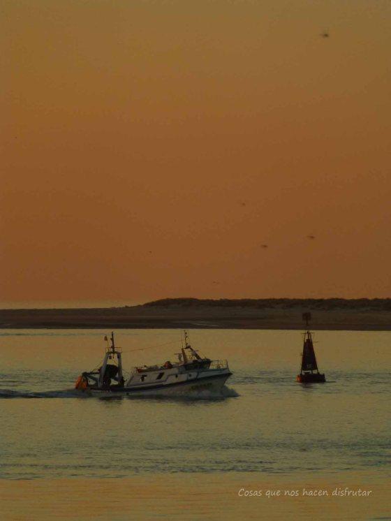 Sanlúcar de Barrameda #bonanza #flota pesquera #fin paro biológico