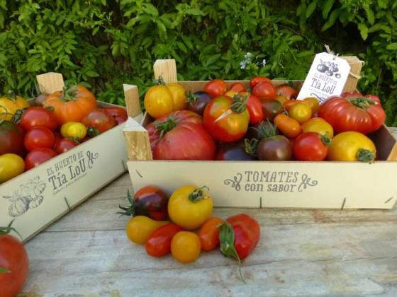 elhuertodetialou-tomatesconsabor