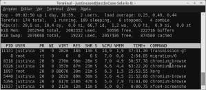 Comando top no Linux