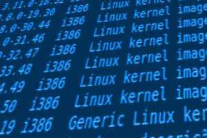 Linux Kernel image dpkg Ubuntu
