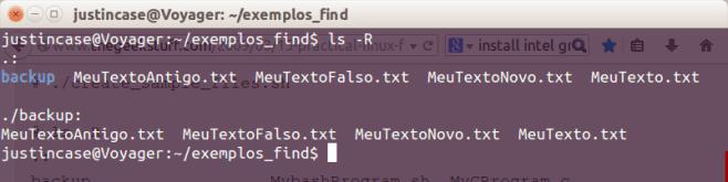 exemplos do comando ls recursivo.