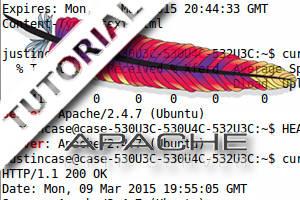 Como descobrir a versão do Apache em execução