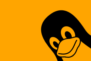 10 exemplos de uso do comando find no Linux