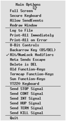 xterm left main options menu