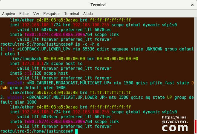 terminal resultado do comando ip