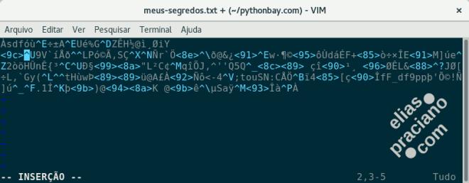 texto criptografado
