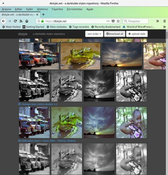 imagem do site dtstyle.net