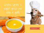 crema carote yogurt cane