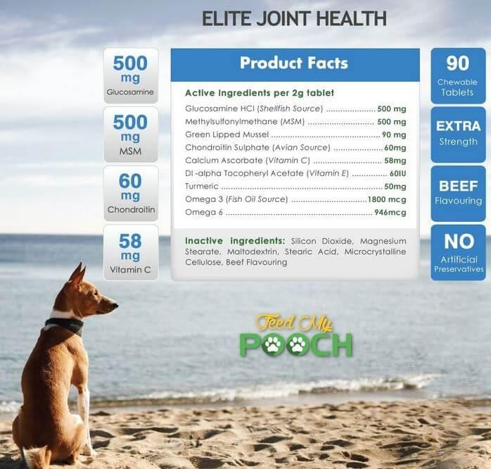 Glucosamina per cani