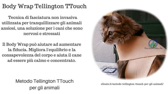 Metodo Tellington TTouch