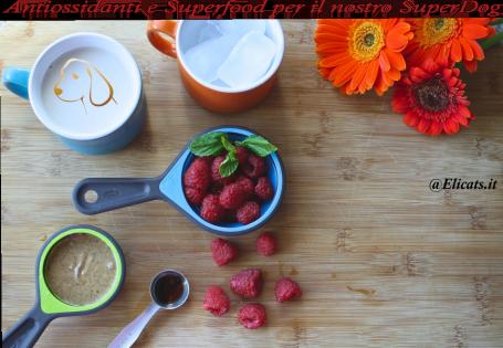 Antiossidanti e Superfood per il nostro SuperDog