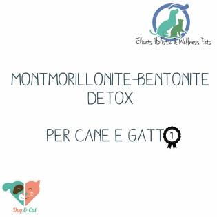Montmorillonite-Bentonite