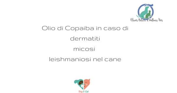 Olio Copaiba cane