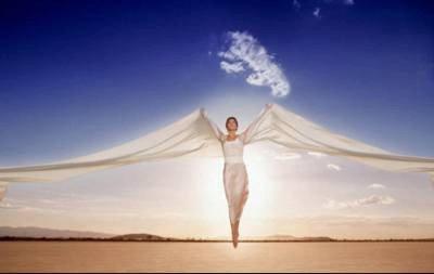 Despliega tus alas y vuela
