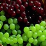 Como se originam as uvas sem sementes?