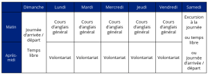 Emploi du Temps : Volontariat + Cours d'Anglais
