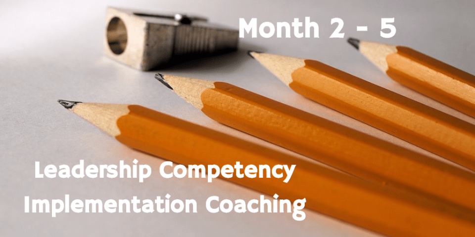 Leadership Competency Implementation Coaching
