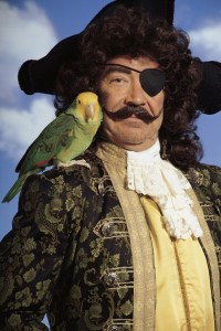 Bird with pirate