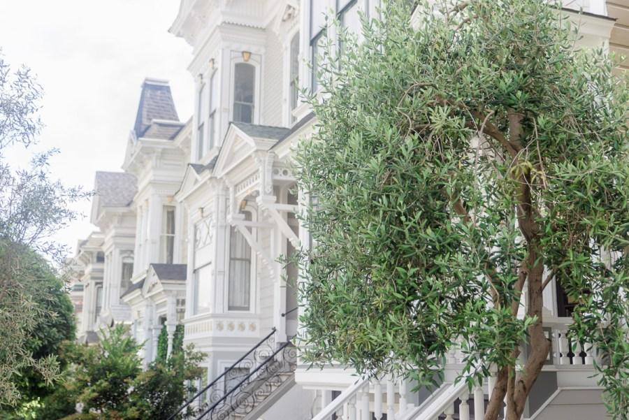 San Francisco 2016 U.S.A. America Holidays-27