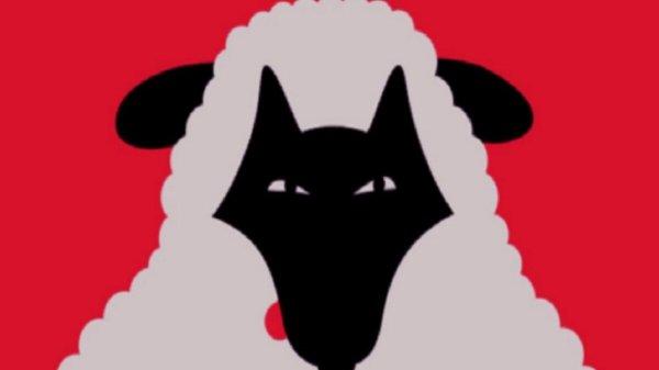 oveja o lobo