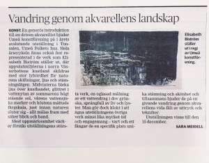 Recension I Västerbottens Kuriren av Elisabeth Biströms utställning 2019