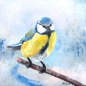Chickadee_sitting