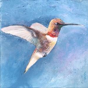 Mr. Hummingbird
