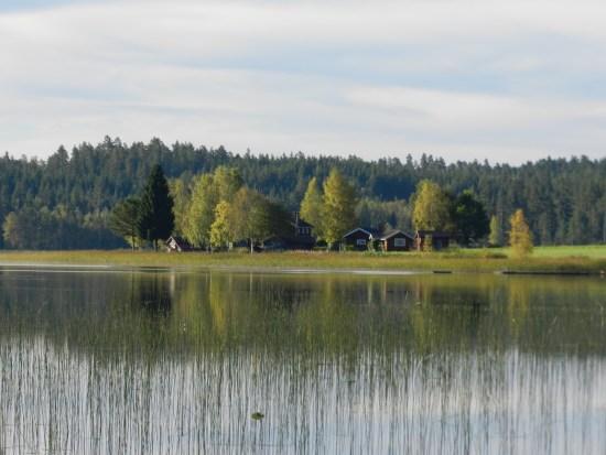 Här i skogen vid sjön Vanbro mellan Vansbro och Mora hittade en jägare ett kranium från en människa och polisen har inlett en mordutredning. Bild: blomstervagen.se
