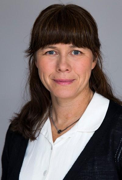 Åsa Romson Foto: Kristian Pohl/ Regeringskansliet