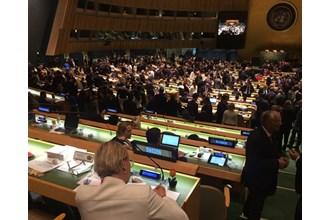 Omröstningen till FN:s säkerhetsråd Foto: Jeanette Mattsson/Regeringskansliet