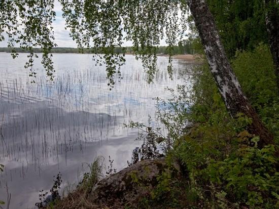 Vid Hjälmarens strand Foto: orebro.se