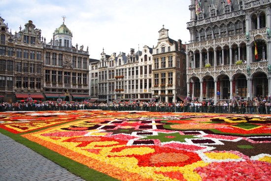 Blomsterklädda Grand Place i Bryssel Copyright: Nivi/Dreamstime.com