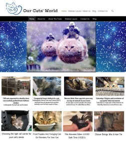 2015 Our Cats World Website Re-Design.