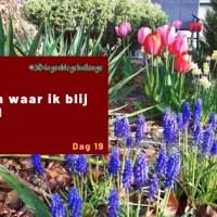 10 dingen waar ik blij van word - Blog challenge #19