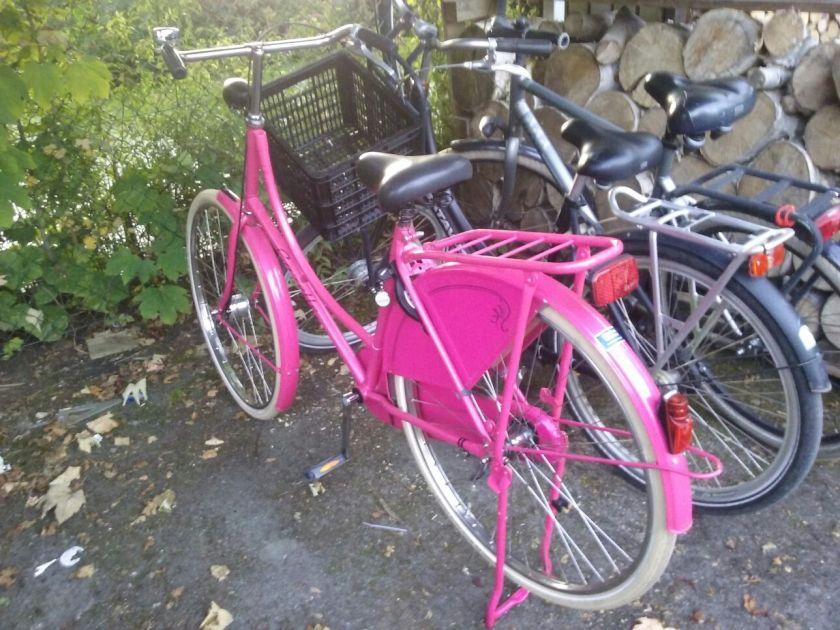 Josina's fiets