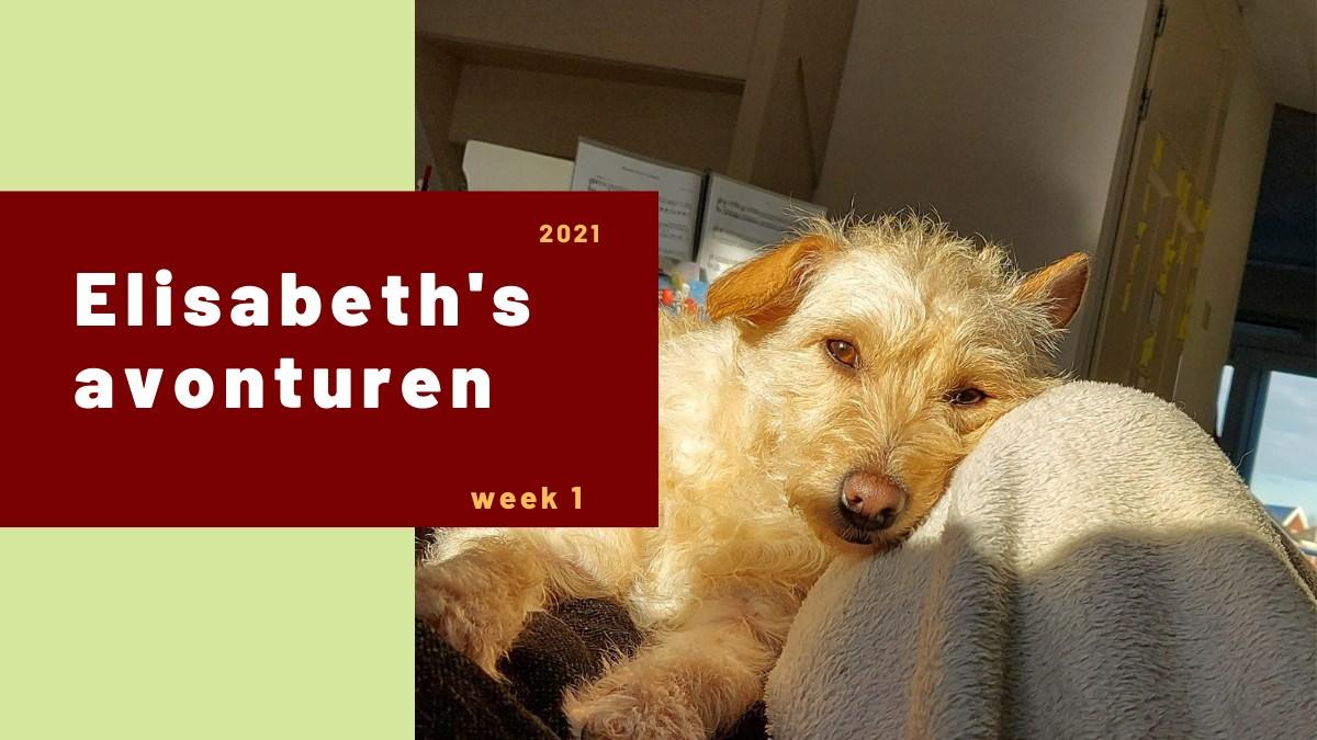 Elisabeth's avonturen week 1 2021