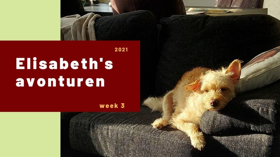 Elisabeth's avonturen week 3 2021