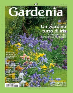 gardenia_aprile18