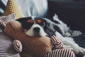 RA Fatigue: Tips to Slay the Beast