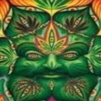 L'histoire occulte du cannabis dans l'Ancien et le nouveau Testament
