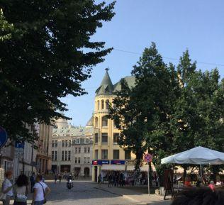 Riga IMG_2283 V Macskaház