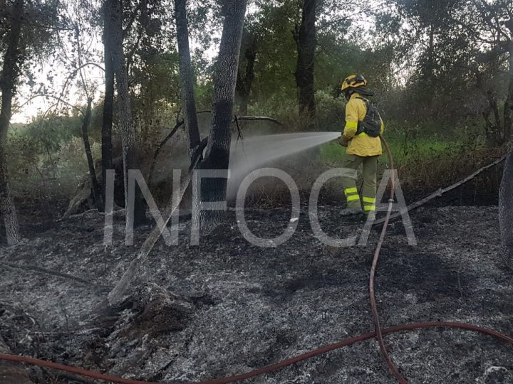 Controlado el incendio de Almonte
