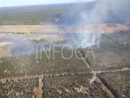 Extinguido el incendio forestal de Almonte que ha afectado a tres hectáreas