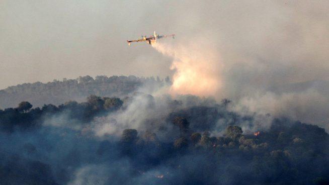 El incendio de El Madroño ha arrasado 245 hectareas