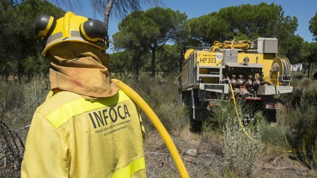 Declarado un incendio en Bonares