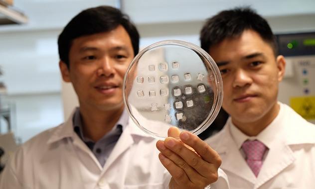 Científicos de Singapur producen piel humana in vitro en menos de un minuto